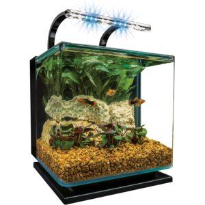最好的鱼缸选项:Marineland轮廓玻璃水族箱套件
