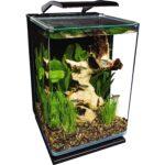 最佳鱼缸选择:海洋肖像玻璃LED水族馆套件
