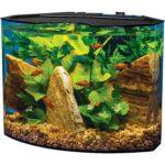 The Best Fish Tanks Option: Tetra Crescent Acrylic Aquarium Kit