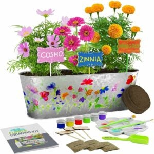 The Best Garden Sets for Kids Option: Paint & Plant Flower Growing Kit