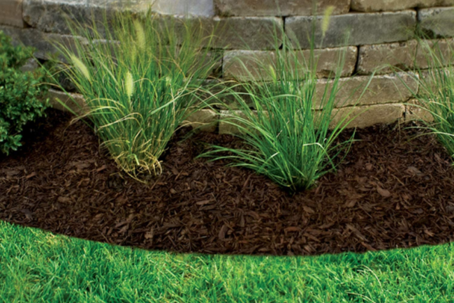 The Best Mulch Options for Your Landscaping Beds