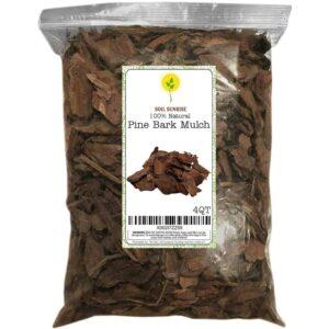 The Best Mulch Option: Rio Hamza Trading Pine Bark Mulch