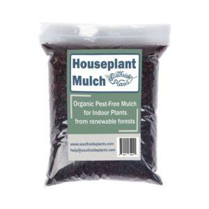 The Best Mulch Option: Southside Plants Organic Houseplant Mulch