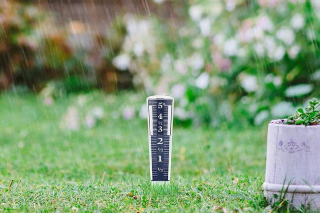 最好的雨量计