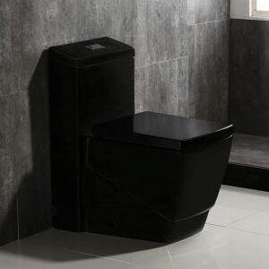 The Best Toilet Option: WOODBRIDGE Dual Flush One Piece Toilet Square Black