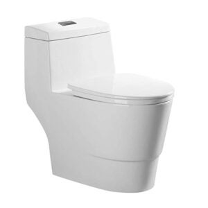 The Best Toilet Option: WOODBRIDGE Modern Design, One Piece, Dual Flush