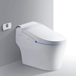 The Best Toilet Option: WOODBRIDGE Smart Bidet Toilet with Remote Control