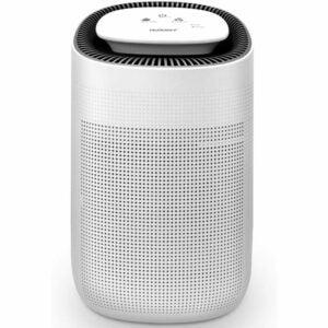 The Best Air Purifier for Pets Option: Tenergy Sorbi 1000ml Air Dehumidifier w/Air Purifying