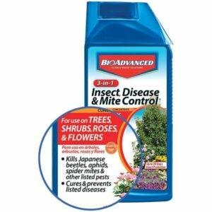最佳杀虫剂选择:生物涂覆3合1昆虫病和螨虫控制