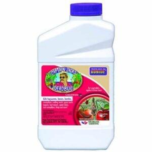The Best Insecticide Option: Bonide (BND253) - Captain Jack's Dead Bug Brew