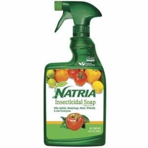 最好的杀虫剂选项:Natria 706230A杀虫皂有机杀螨剂