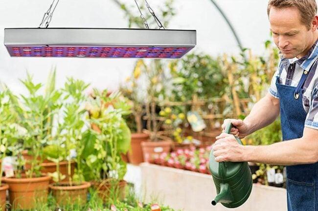 The Best LED Grow Lights Option