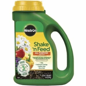 最好的植物食物选择:Miracle-Gro Shake ' N Feed万能植物食物