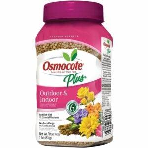 最佳植物食品选项:Osmocote 274150智能释放植物食品加上
