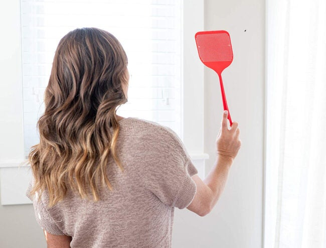 Best Fly Swatter Options