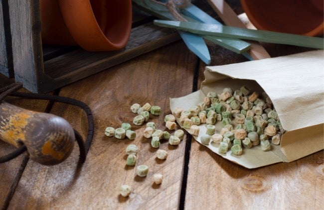 The Tricks of the Trade: Swapping Seeds for Fun and Frugality