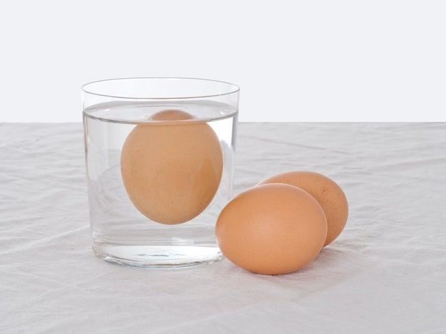 testing rotten eggs