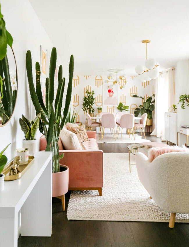 maximalist living room with cacti