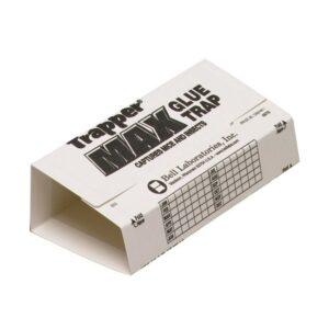 The Best Bed Bug Trap Options: Trapper Max Glue Traps 12 Glue Boards Trap