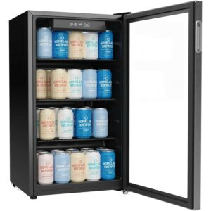Best Beverage Fridge Options Homelabs