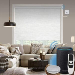 The Best Smart Blinds Options Roller