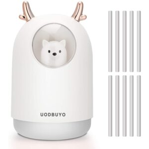 The Best Travel Humidifier Options: UODBUYO Portable Cool Mist Humidifier, 300ml