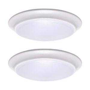 The Best Basement Lighting Options: LIT-PaTH LED Flush Mount Ceiling Lighting Fixture