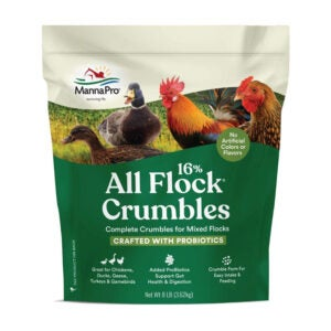 The Best Chicken Feed Option: Manna Pro All Flock with Probiotics Crumble