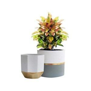 The Best Planter Options: EXQUIS HOME LA JOLIE MUSE White Ceramic Planters