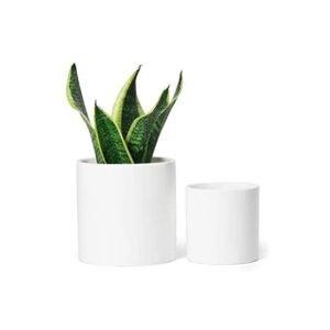 The Best Planter Options: Greenaholics Vintage Style Medium Ceramic Pots