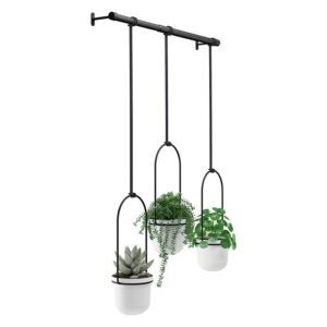 The Best Planter Options: Umbra Triflora Hanging Planter for Window