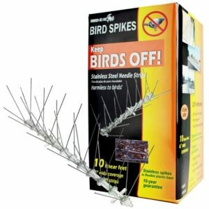 The Best Bird Deterrent Option: Bird-X STS-10-R Stainless Steel Bird Spikes