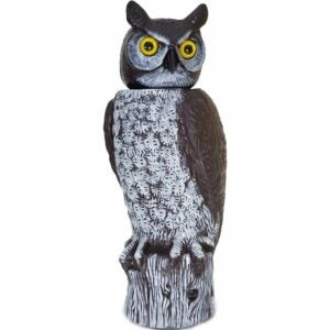 The Best Bird Deterrent Option: Dalen Gardeneer Natural Enemy Scarecrow Owl Decoy