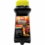 The Best Fire Ant Killer Option: Ortho Orthene Fire Ant Killer