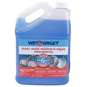 Best Roof Cleaner Options: Wet and Forget 10587 1 Gallon Moss
