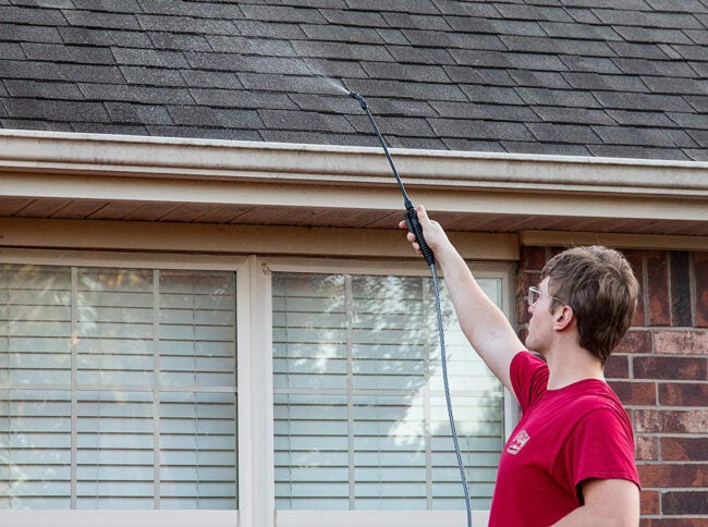 Best Roof Cleaner Options