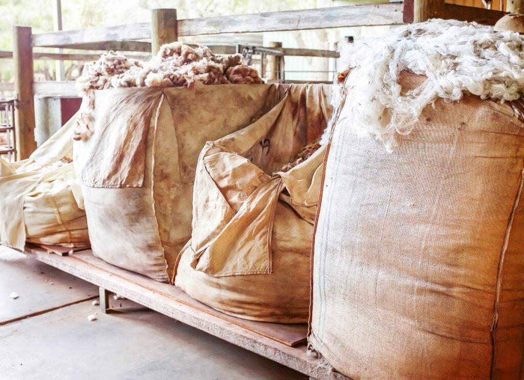 Bags of Sheep Wool