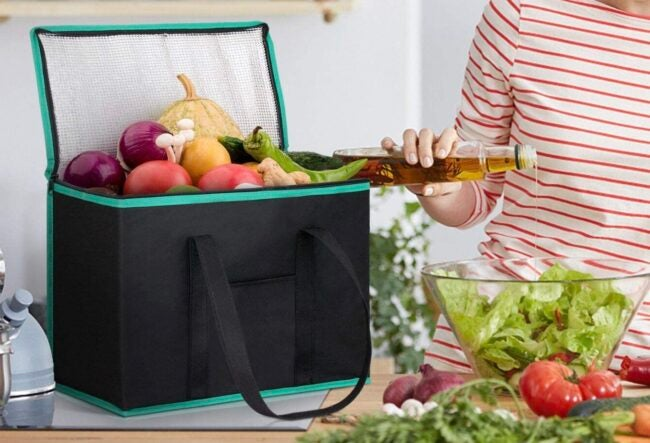 Best Insulated Grocery Bag