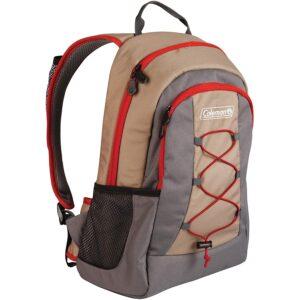 最好的背包冷却器选项:科尔曼