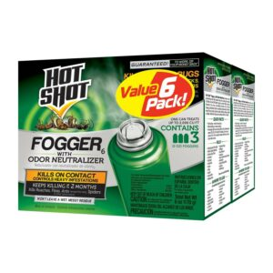 The Best Insect Fogger Options 2Pack