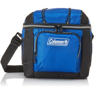 The Best Lunch Box Cooler Options Coleman