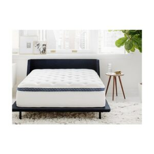 The Best Mattress For Stomach Sleepers Options WinkBed