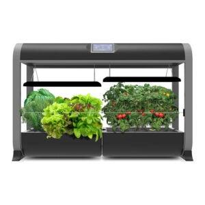 The Best AeroGarden Option: AeroGarden Farm 24Basic, Salad Bar Seed Kit