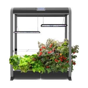 The Best AeroGarden Option: AeroGarden Farm 24XL w Salad Bar Seed Kit