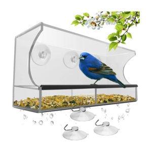 The Best Bird Supplies Option: Nature's Hangout Window Bird Feeder
