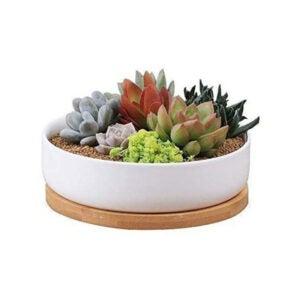 芦荟植物的最佳罐子选项:Binwen 6.3英寸圆形陶瓷白色多汁锅