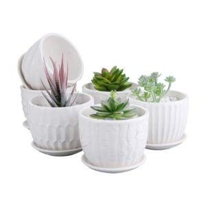 芦荟植物的最佳罐子选项:Brajttt 4英寸气缸陶瓷花盆