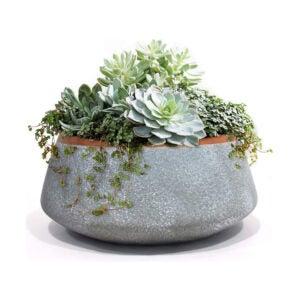芦荟植物的最佳罐子选项:LaJolíeMuse大型陶瓷播种机盆