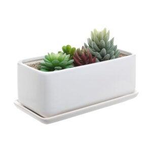芦荟植物最好的罐子选项:暗型10英寸矩形现代陶瓷锅