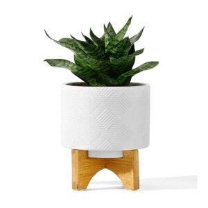 芦荟植物的最佳罐子选项:Potey Mid Century Ceramic Pot锅与木头支架